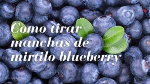 Como triar mancha de mirtilo, blueberry, de roupa, carpete, estofado